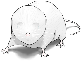 Brightmouse.png